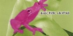 Bekka's Frogland Orchestra - Electric Lylipad, 2006